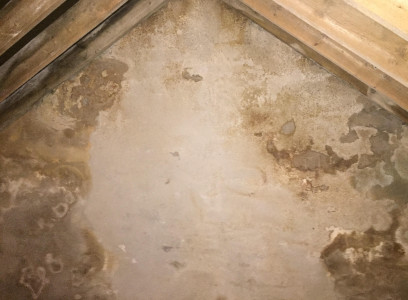 Example of Penetrating Dampness